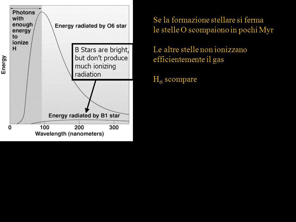 Se la formazione stellare si ferma le stelle O scompaiono in pochi Myr Le altre stelle non ionizzano efficientemente il gas H scompare