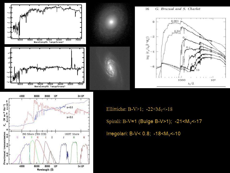 Ellittiche: B-V>1; -22<M V <-18 Spirali: B-V 1 (Bulge B-V>1); -21<M V <-17 Irregolari: B-V< 0.8; -18<M V <-10