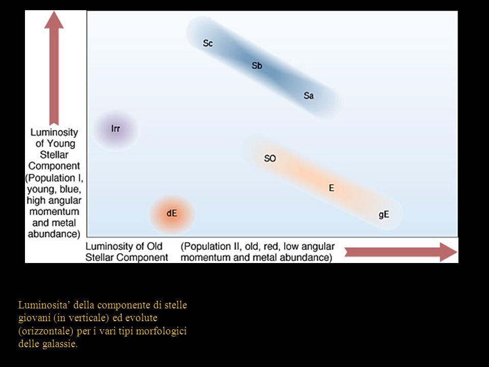 Luminosita della componente di stelle giovani (in verticale) ed evolute (orizzontale) per i vari tipi morfologici delle galassie.