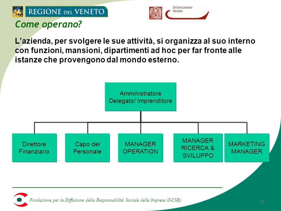 Fondazione per la Diffusione della Responsabilità Sociale delle Imprese (I-CSR) 12 Come operano.