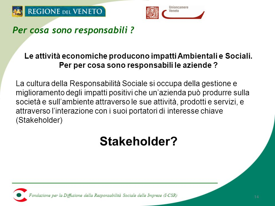 Fondazione per la Diffusione della Responsabilità Sociale delle Imprese (I-CSR) 14 Per cosa sono responsabili .