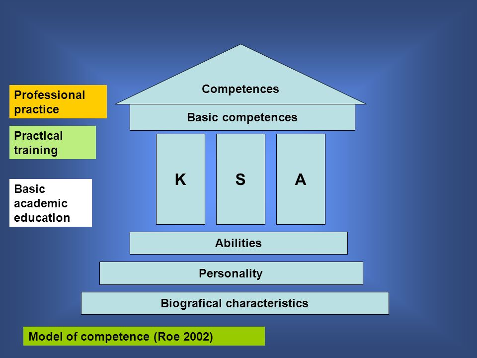 Biografical characteristics Personality Abilities KSA Basic competences Competences Basic academic education Practical training Professional practice Model of competence (Roe 2002)