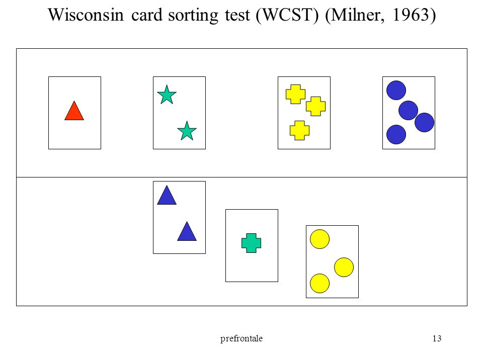prefrontale13 Wisconsin card sorting test (WCST) (Milner, 1963)