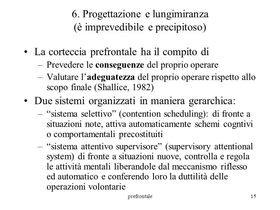 prefrontale16 6.