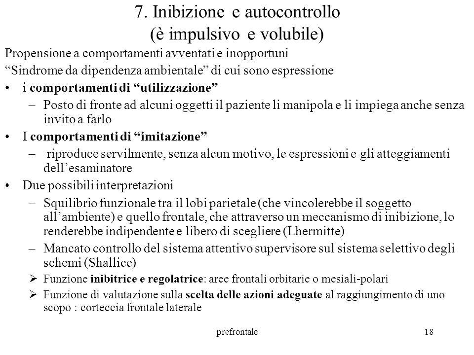 prefrontale19 8.