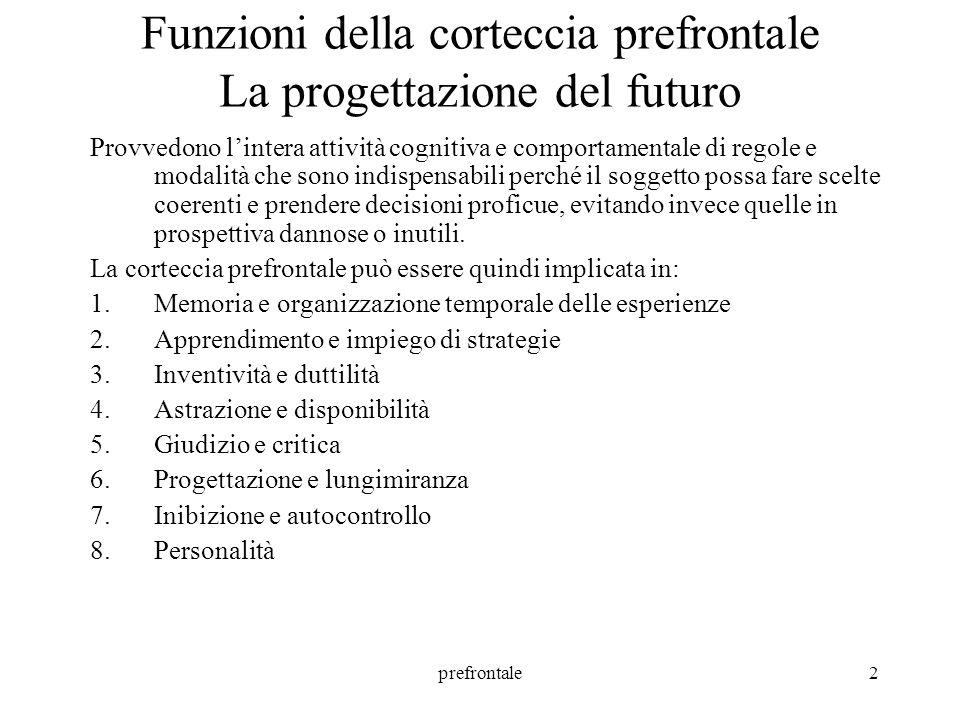 prefrontale3 1.