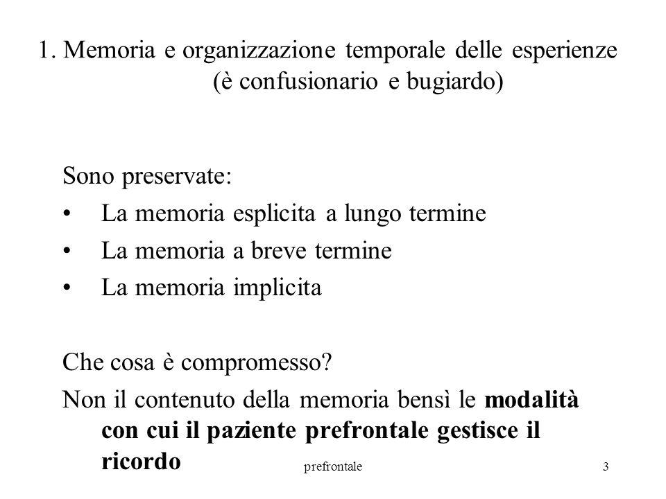 prefrontale4 1.