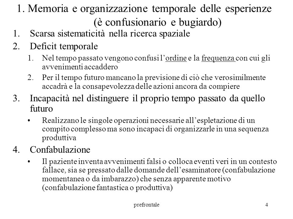 prefrontale5 2.