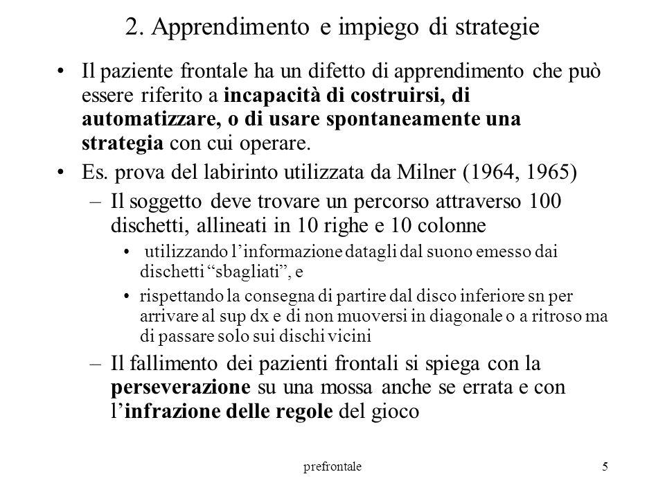 prefrontale6 3.