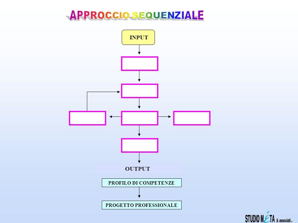 OUTPUT PROGETTO PROFESSIONALE PROFILO DI COMPETENZE INPUT