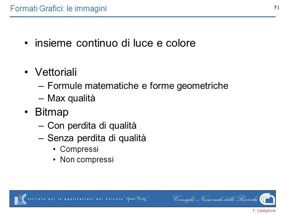 F. Castiglione 51 insieme continuo di luce e colore Vettoriali –Formule matematiche e forme geometriche –Max qualità Bitmap –Con perdita di qualità –S