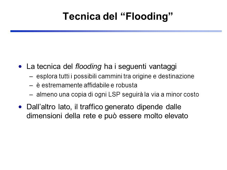 Tecnica del Flooding La tecnica del flooding ha i seguenti vantaggi –esplora tutti i possibili cammini tra origine e destinazione –è estremamente affi