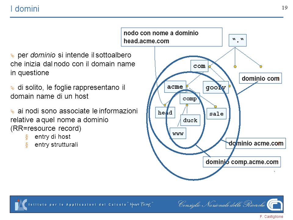 F. Castiglione 19 I domini per dominio si intende il sottoalbero che inizia dal nodo con il domain name in questione di solito, le foglie rappresentan