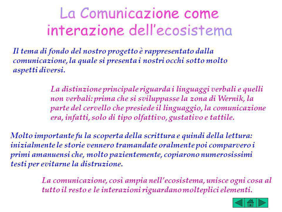 Il tema di fondo del nostro progetto è rappresentato dalla comunicazione, la quale si presenta i nostri occhi sotto molto aspetti diversi.