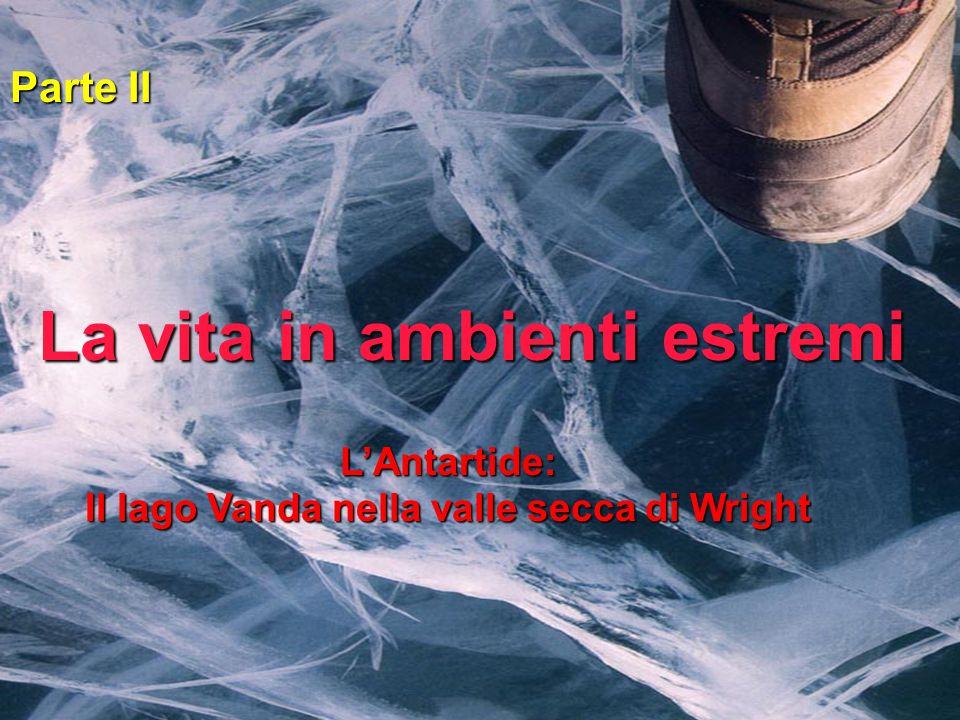 LAntartide: Il lago Vanda nella valle secca di Wright Parte II La vita in ambienti estremi