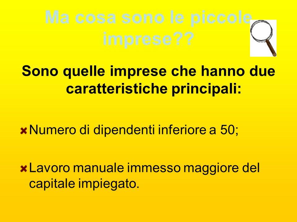 Noi siamo importanti!!! Il signor Lattanzi ci è subito piaciuto in quanto ha esordito affermando che le piccole imprese sono importanti in quanto sono