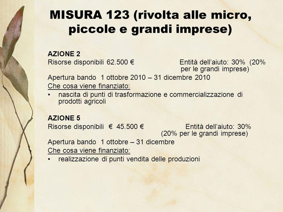 MISURA 123 (rivolta alle micro, piccole e grandi imprese) AZIONE 2 Risorse disponibili 62.500 Entità dellaiuto: 30% (20% per le grandi imprese) Apertu