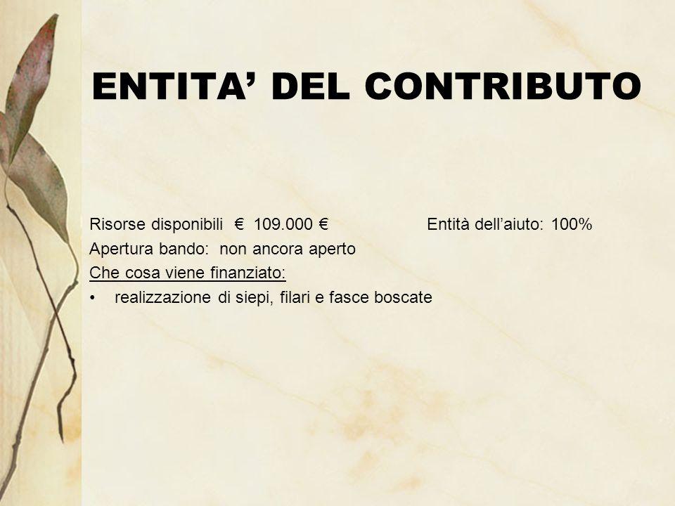 ENTITA DEL CONTRIBUTO Risorse disponibili 109.000 Entità dellaiuto: 100% Apertura bando: non ancora aperto Che cosa viene finanziato: realizzazione di