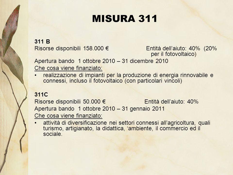 MISURA 311 311 B Risorse disponibili 158.000 Entità dellaiuto: 40% (20% per il fotovoltaico) Apertura bando 1 ottobre 2010 – 31 dicembre 2010 Che cosa