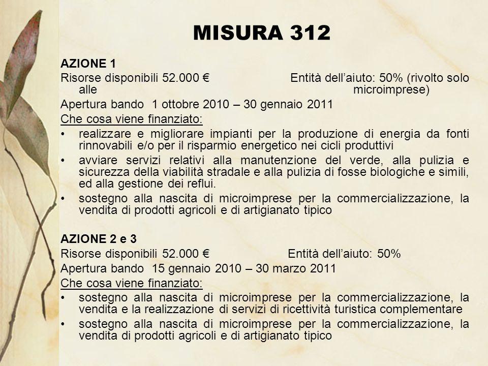 MISURA 312 AZIONE 1 Risorse disponibili 52.000 Entità dellaiuto: 50% (rivolto solo alle microimprese) Apertura bando 1 ottobre 2010 – 30 gennaio 2011