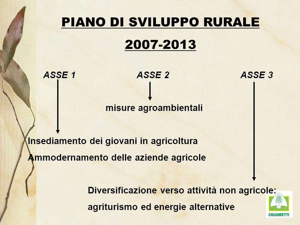 PIANO DI SVILUPPO RURALE 2007-2013 ASSE 1 ASSE 2 ASSE 3 misure agroambientali Insediamento dei giovani in agricoltura Ammodernamento delle aziende agr