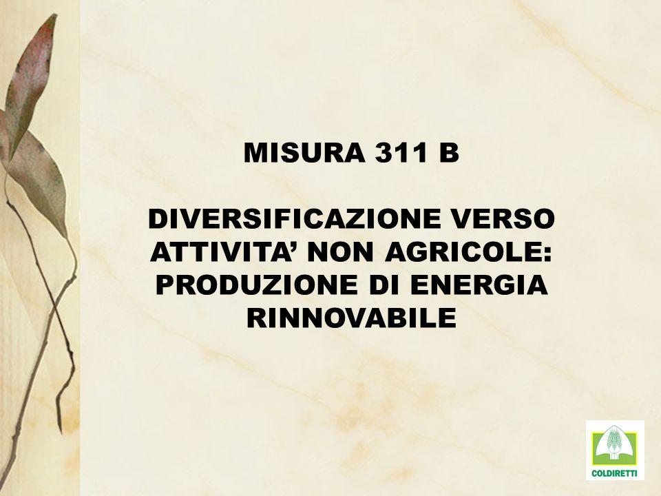 MISURA 311 B DIVERSIFICAZIONE VERSO ATTIVITA NON AGRICOLE: PRODUZIONE DI ENERGIA RINNOVABILE