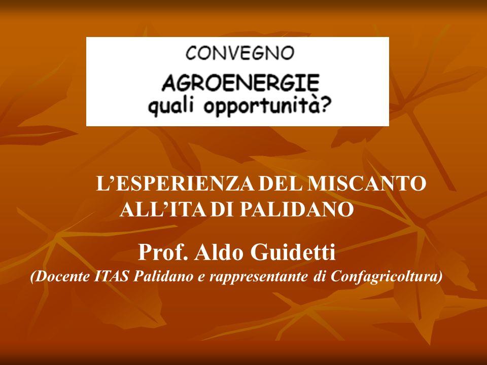 LESPERIENZA DEL MISCANTO ALLITA DI PALIDANO Prof. Aldo Guidetti (Docente ITAS Palidano e rappresentante di Confagricoltura)