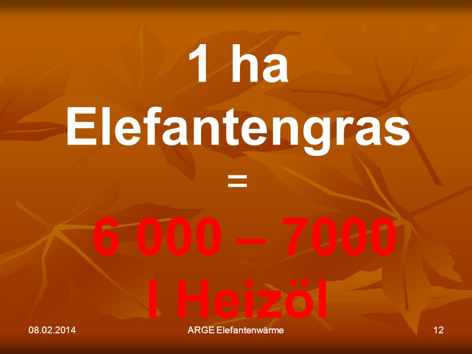 08.02.2014ARGE Elefantenwärme12 1 ha Elefantengras = 6 000 – 7000 l Heizöl