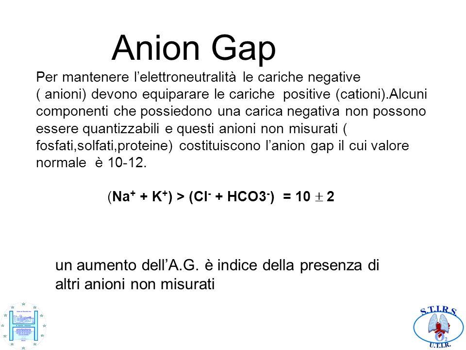 Anion Gap Per mantenere lelettroneutralità le cariche negative ( anioni) devono equiparare le cariche positive (cationi).Alcuni componenti che possied