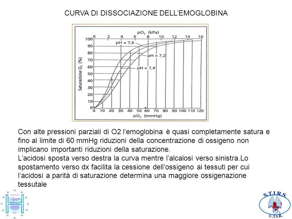 CURVA DI DISSOCIAZIONE DELLEMOGLOBINA Con alte pressioni parziali di O2 lemoglobina è quasi completamente satura e fino al limite di 60 mmHg riduzioni