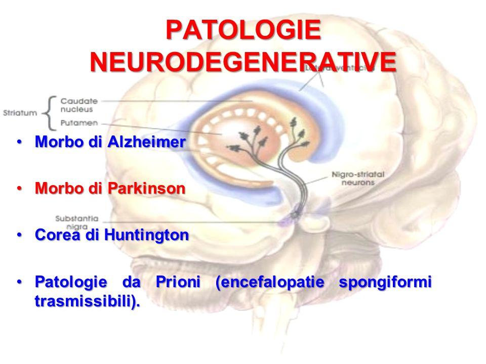 PATOLOGIE NEURODEGENERATIVE Morbo di AlzheimerMorbo di Alzheimer Morbo di ParkinsonMorbo di Parkinson Corea di HuntingtonCorea di Huntington Patologie da Prioni (encefalopatie spongiformi trasmissibili).Patologie da Prioni (encefalopatie spongiformi trasmissibili).