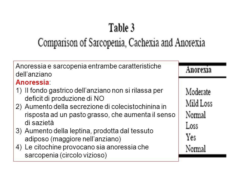 Anoressia e sarcopenia entrambe caratteristiche dellanziano Anoressia: 1)Il fondo gastrico dellanziano non si rilassa per deficit di produzione di NO