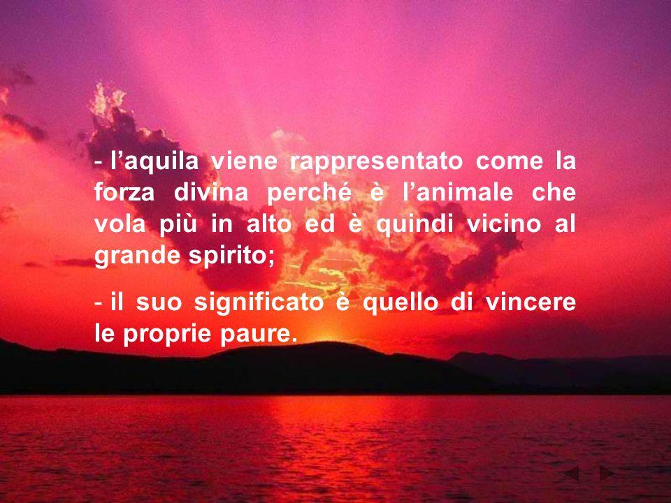 - laquila viene rappresentato come la forza divina perché è lanimale che vola più in alto ed è quindi vicino al grande spirito; - il suo significato è
