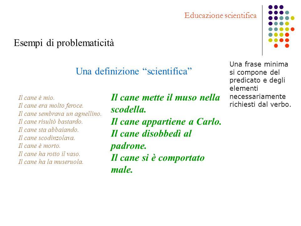 Esempi di problematicità Educazione scientifica Una definizione scientifica Il cane è mio. Il cane era molto feroce. Il cane sembrava un agnellino. Il
