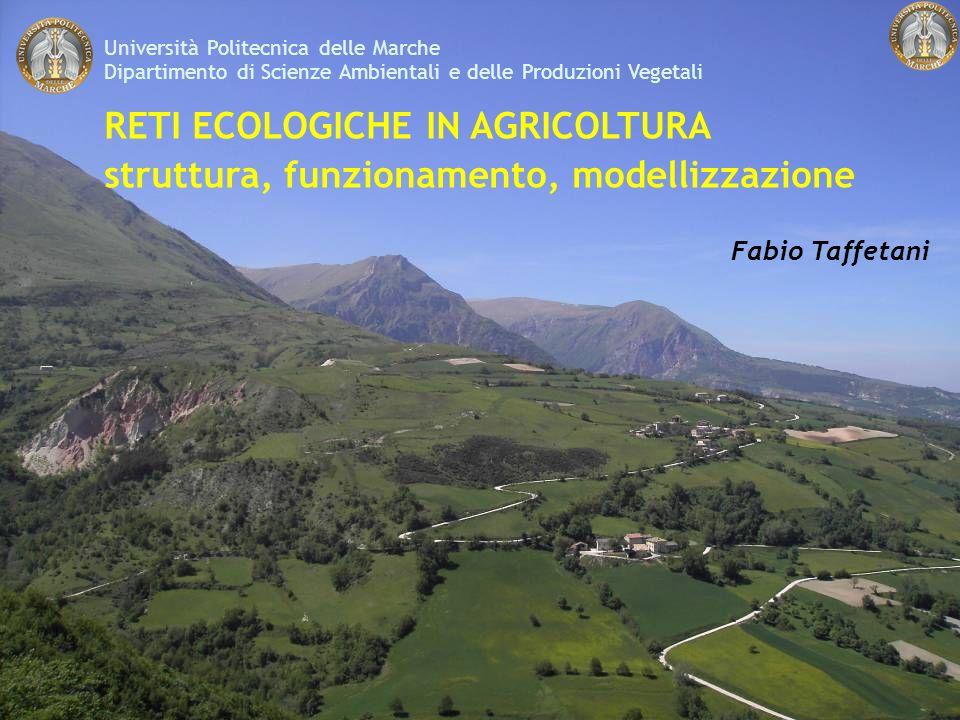 Università Politecnica delle Marche Dipartimento di Scienze Ambientali e delle Produzioni Vegetali RETI ECOLOGICHE IN AGRICOLTURA struttura, funzionamento, modellizzazione Fabio Taffetani