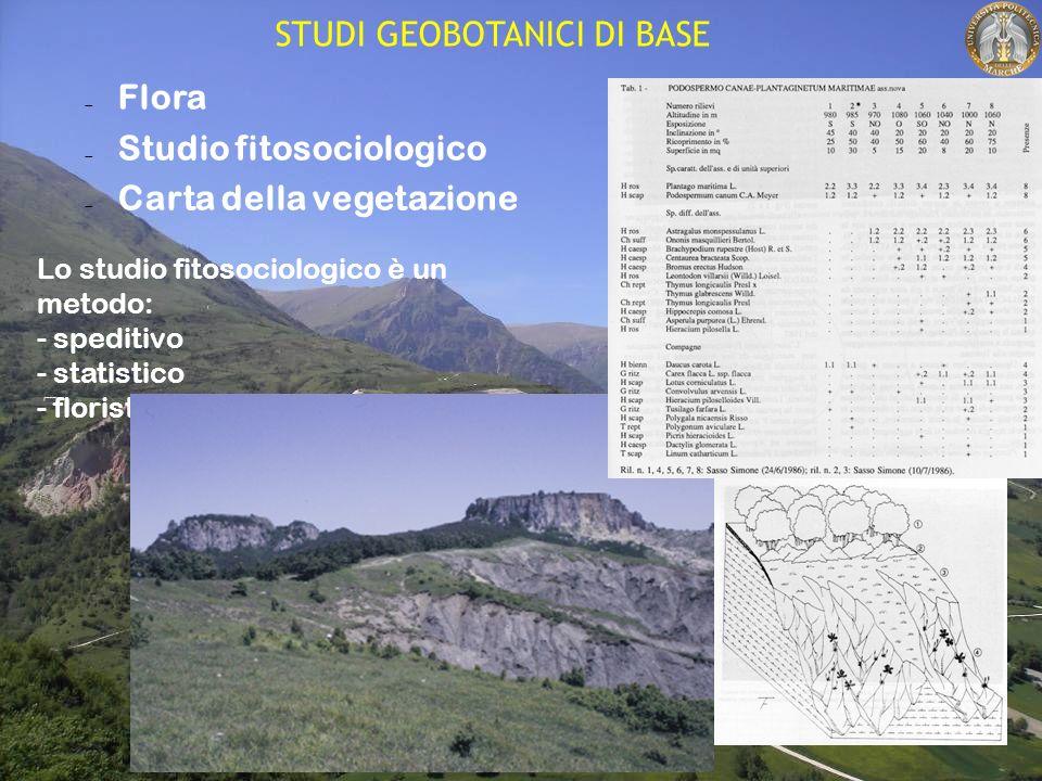 Flora Studio fitosociologico Carta della vegetazione Lo studio fitosociologico è un metodo: - speditivo - statistico - floristico STUDI GEOBOTANICI DI BASE