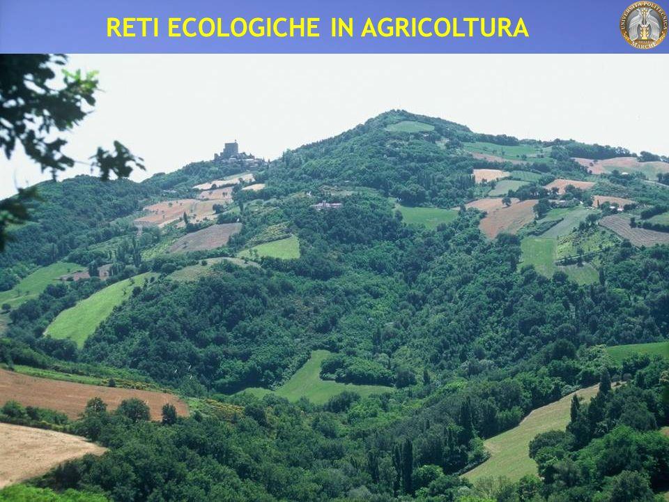 RETI ECOLOGICHE IN AGRICOLTURA