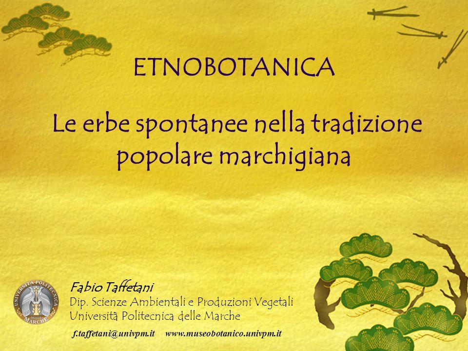 ETNOBOTANICA Le erbe spontanee nella tradizione popolare marchigiana Fabio Taffetani Dip.