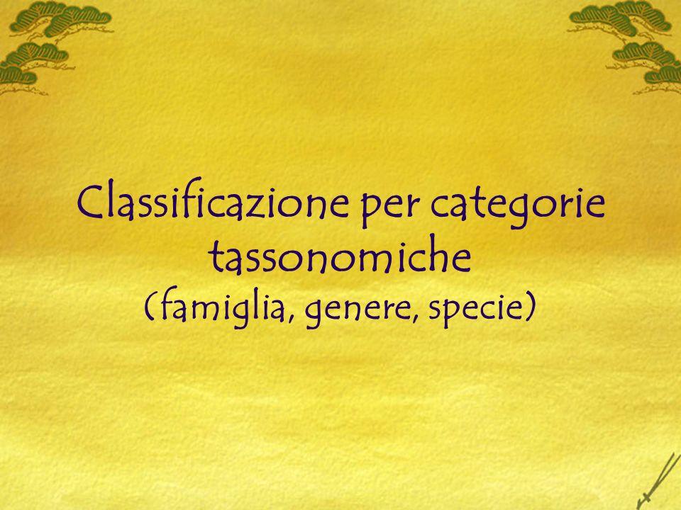 Classificazione per categorie tassonomiche (famiglia, genere, specie)