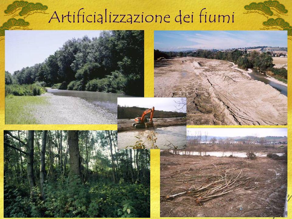 Artificializzazione dei fiumi