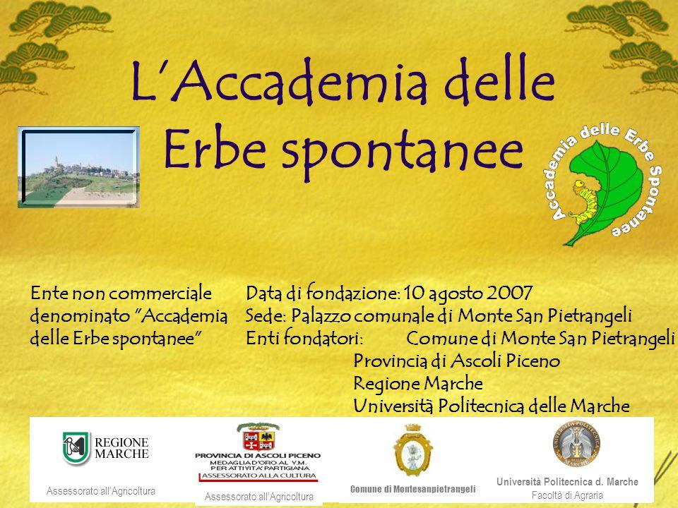 LAccademia delle Erbe spontanee Università Politecnica d.