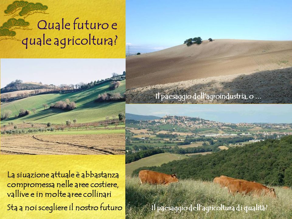 Quale futuro e quale agricoltura.