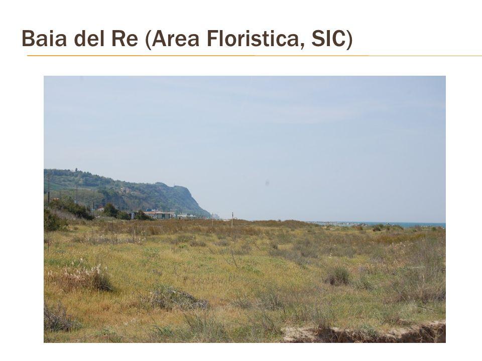 Baia del Re (Area Floristica, SIC)