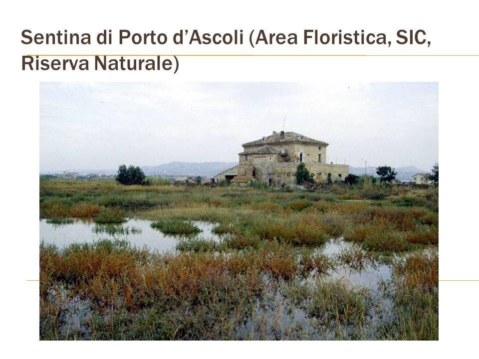 Sentina di Porto dAscoli (Area Floristica, SIC, Riserva Naturale)