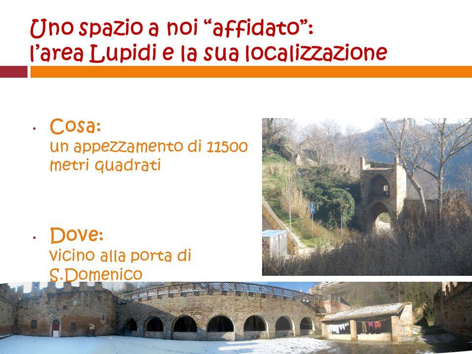Uno spazio a noi affidato: larea Lupidi e la sua localizzazione Cosa: un appezzamento di 11500 metri quadrati Dove: vicino alla porta di S.Domenico