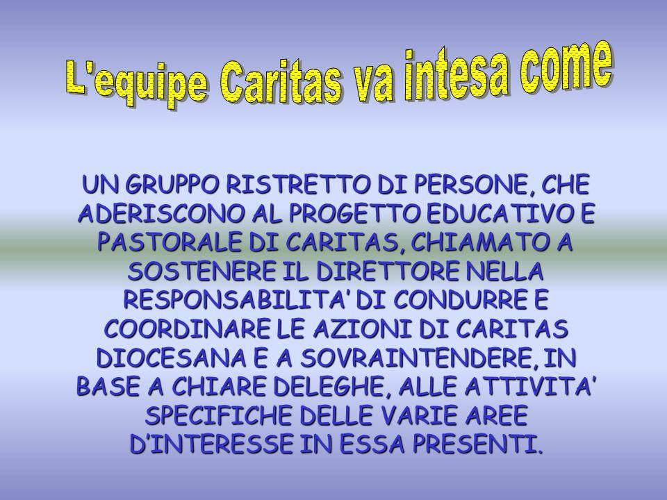 La semplice somma dei collaboratori Il consiglio di amministrazione Un gruppo di esperti consulenti Il Consiglio Caritas Linsieme dei segretari operativi Linsieme dei delegati
