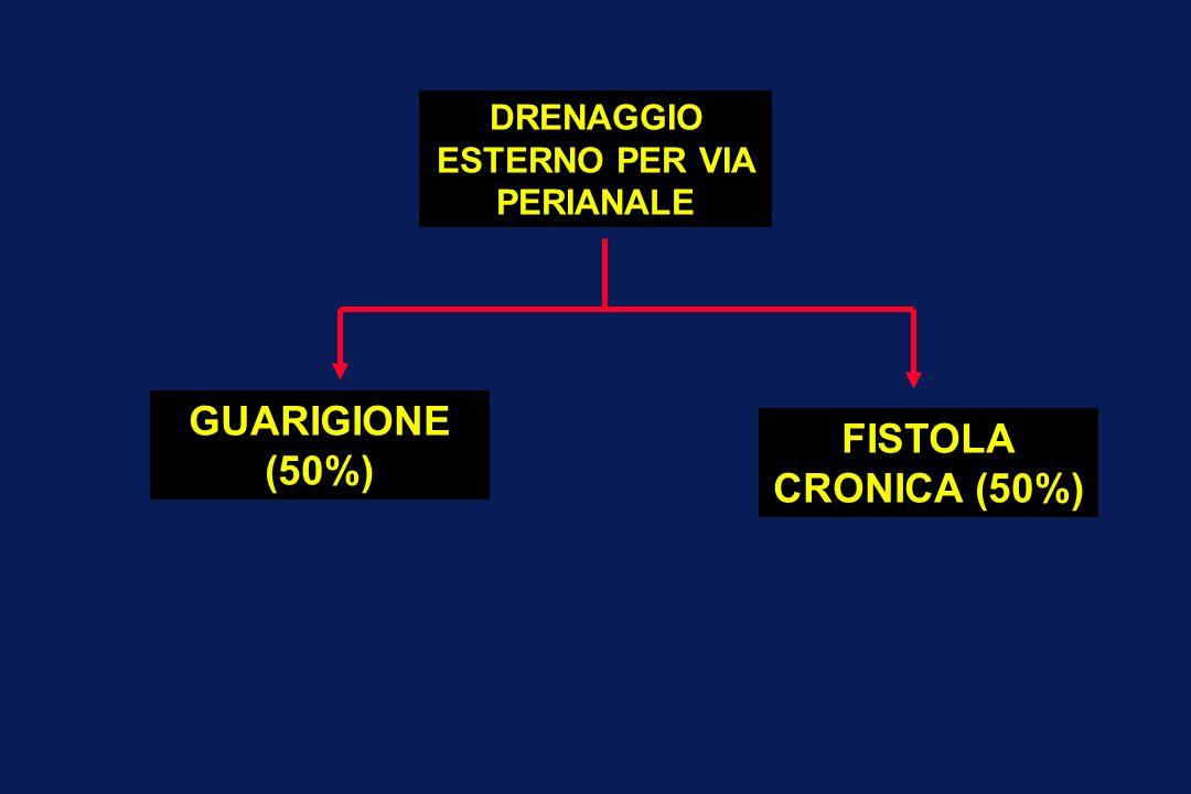FISTOLA CRONICA (50%) DRENAGGIO ESTERNO PER VIA PERIANALE GUARIGIONE (50%)