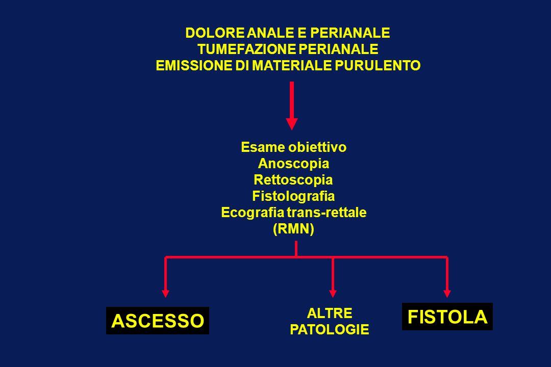 DOLORE ANALE E PERIANALE TUMEFAZIONE PERIANALE EMISSIONE DI MATERIALE PURULENTO Esame obiettivo Anoscopia Rettoscopia Fistolografia Ecografia trans-re