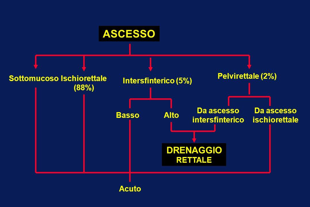 SottomucosoIschiorettale (88%) Intersfinterico (5%) ASCESSO Pelvirettale (2%) BassoAlto Da ascesso intersfinterico Da ascesso ischiorettale DRENAGGIO
