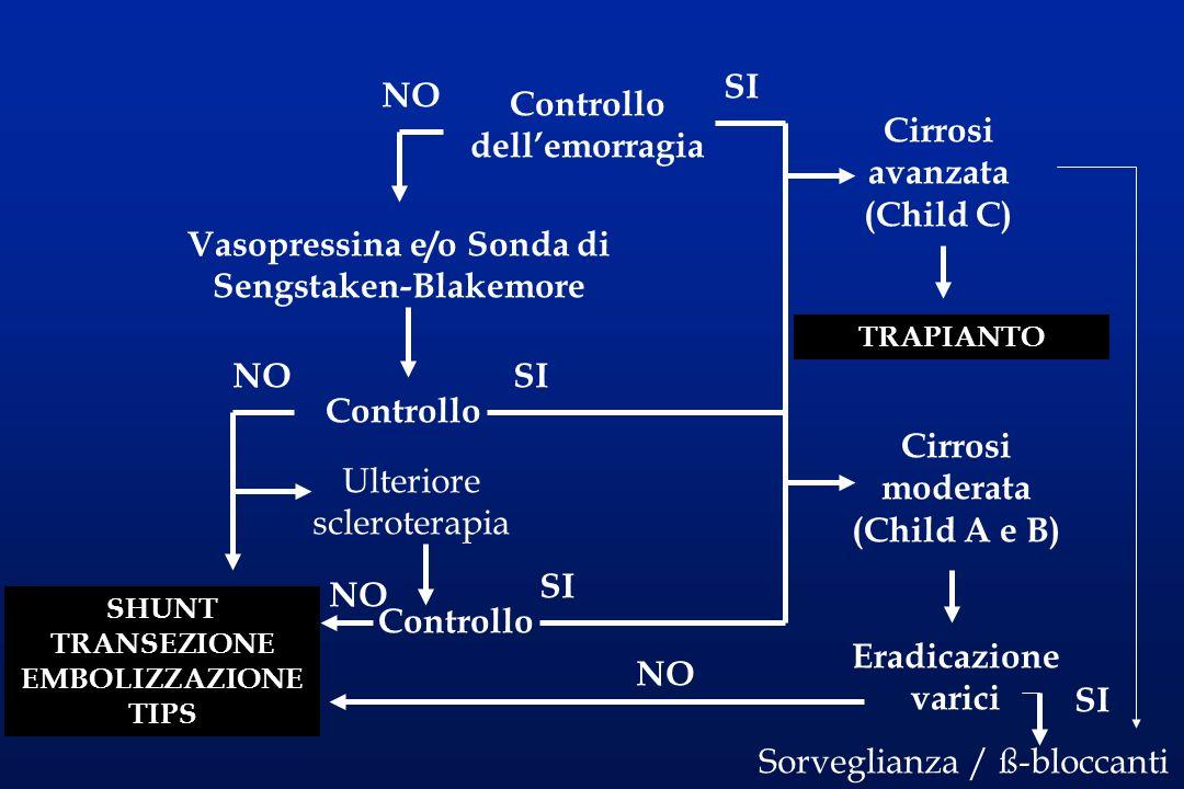Controllo dellemorragia NO SI Vasopressina e/o Sonda di Sengstaken-Blakemore Controllo NOSI SHUNT TRANSEZIONE EMBOLIZZAZIONE TIPS Ulteriore sclerotera